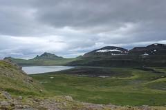 Hornvik, Hornstrandir Nature Reserve (Westfjords)