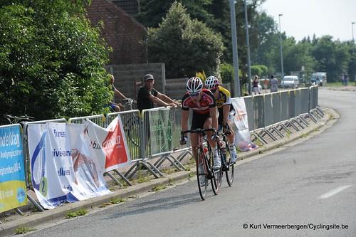Geel Oosterlo  (288)