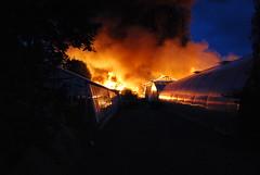 Eden in  Hverageri burning 22.7.2011 (Halldora Eldon) Tags: fire iceland south burn eden hveragerdi