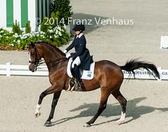 140826_Dressage_GP_2_1381.jpg (FranzVenhaus) Tags: horses france fei normandie fra caen weg dressage