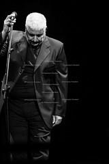 Foto-concerto-pino daniele-verona-01-settembre-2014-Prandoni (francesco prandoni) Tags: show music concert italia live stage concerto arena verona musica ita spettacolo pinodaniele neroameta