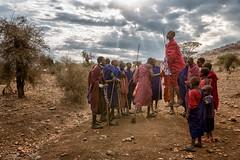 Dancing Masaai - Tanzania (CanvasOfLight) Tags: africa men tanzania dance jump jumping village dancing traditional group stick maasai 2014