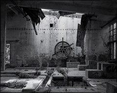 The Wheel of Misfortune (BG Sixtyniner) Tags: camera bw plant abandoned water hall blackwhite factory decay processing 4x5 lf hp5 facility press ilford largeformat graflex 400asa a49 supergraphic adox sheetfilm atomal