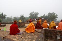 India_0470