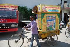 DSC_4218 (srkgkarnal) Tags: cows radha krishan shri karnal gaushala
