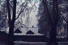 Snow (imahmadaadil) Tags: snow winter kashmir