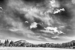 Birthplace of Tomorrow's Dreams (Theodore A. Stark) Tags: ifttt 500px 2015 5d mark ii co canon cold colorado frozen larimer county nature naturescape november outdoors rmnp rocky mountain national park snow sprague lake tstarkcom ted stark theodore a usa wind