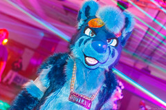 _MG_0631 (Tiger_Icecold) Tags: confuzzled cfz2016 cf2016 furcon furry convention fursuit birmingham party deaddog ddp deaddogparty