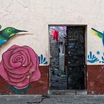 Hummingbirds and door, Puebla, Mexico thumbnail