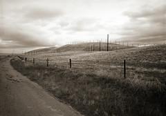 wind farm (stormiticus) Tags: lf 5x7 kodak txp canhan xtol 320txp film bw analog blackandwhite
