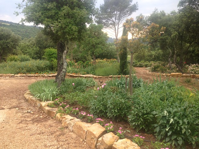 De jolis carrés de verdure suite aux efforts du maitre de maison.