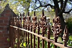The Fence (PhotosbyDi) Tags: bokeh vega hff castironfence nikond90 happyfencefriday nikonf3518105mmlens euroa2