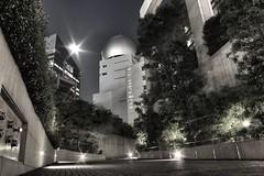 Full Moon in Shibuya (Greg Tokyo) Tags: moon japan night tokyo shibuya