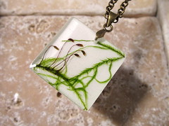 Cat tail moss necklace (chaerea) Tags: plant nature necklace leaf moss jewelry jewellery bryophyte bryophytes isothecium cattailmoss
