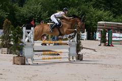 DSC04662_s (AndiP66) Tags: horse macro sports sport schweiz switzerland jumping sony july sp di if juli alpha tamron concours pferd equestrian f28 solothurn ld horsejumping 70200mm wettbewerb 2014 springen kantonsolothurn balsthal springreiten cantonsolothurn andreaspeters pferdespringen 77m2 a77ii ilca77m2 77ii 77markii slta77ii