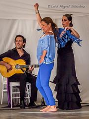 _46X6547 (luismisax) Tags: cadiz sarabaras canonef70200f4lisusm canon1dmarkiii elbaluarte bluefincook flamencodancingtour
