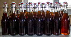 Bottled. (martinbrampton) Tags: england food unitedkingdom homebrew brampton beermaking march2013 townfootpark