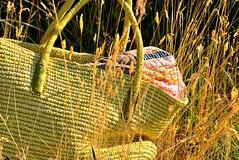 Summer colors (balu51) Tags: morning summer green grass juni bag quilt sewing quilting patchwork 2014 goldengrass coinquilt copyrightbybalu51