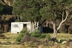 Abandoned Hut Bach Landscape Cape Palliser Wairarapa New Zealand