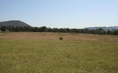 Lot 117 Mackellar Drive, Vacy NSW