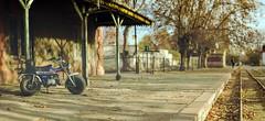 mi moto (.el Ryan.) Tags: art argentina nikon dof arte bokeh 85mm paisaje colores mendoza lente aire lujan brenizer chacrasdecoria lujandecuyo mauricioryan
