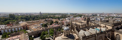 View from the top of the Giralda (Tom Raftery) Tags: sevilla cathedral seville giralda