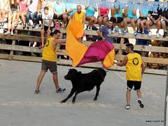 FiestasVispal14-082