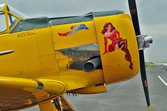 SNJ-4 Texan N763V (skyhawkpc) Tags: colorado aircraft aviation navy fortcollins loveland co naval usnavy usn allrightsreserved texan noseart fnl 2014 northamerican snj4 kfnl fortcollinslovelandmunicipalairport 51381 garyverver n763v majordistraction