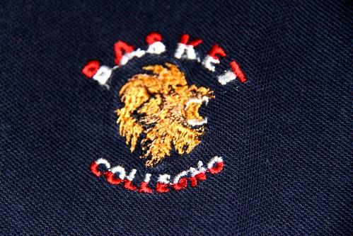 Dettaglio logo leone polo Collegno Basket