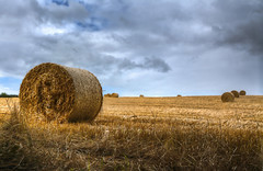 Hay Rolls (RichardK2019) Tags: 5 derbyshire hdr augustbankholiday photomatix typicalweather nikond7100