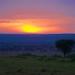 African safari, Aug 2014 - 087