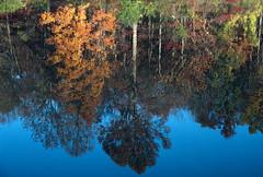 Eagle Creek Park, Indianapolis, Indiana 2007 (Roger Gerbig) Tags: 35mm indianapolis indiana slidefilm eaglecreekpark canoneos3 kodachrome200 135film canonef28105f3545 rogergerbig