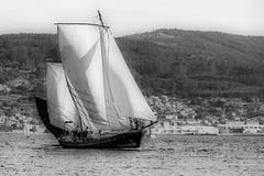 A rumbo (Perurena) Tags: wood sea sky blackandwhite bw blancoynegro sailboat mar madera barco sailing sails galicia cielo velas combarro velero riasbajas clsico riadepontevedra oceanoatlantico poio efectoorton nagegando