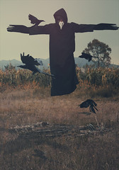 Human Bird (Wil Reveur) Tags: sky art forest fineart surreal levitation human fotografia today levitar levitacion shaden humanbird brookeshaden canont3i wilreveur