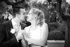 20140830_123312_MME1646_bw (mimayerle) Tags: trees wedding portrait people bw white black nature outdoors holding hands kissing sitting dress framed posing suit