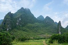 DSC02552 (jipe7) Tags: china guilin chine guangxi guanxi lijangriver