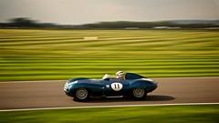 A 1956 Jaguar D-Type (Gary8444) Tags: d historic september type jaguar goodwood motorsport revival 2014