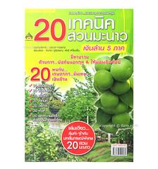 20 เทคนิคการปลูกมะนาว การปลูกมะนาวนอกฤดู