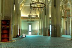 Contemplation (Rickydavid) Tags: mosque contemplation contemplazione rickydavid riccardocuppini grandemoscheadiroma wwwriccardocuppinicom httpwwwfacebookcomriccardocuppiniphotography