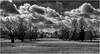 infinity (David Baldock Photography) Tags: trees clouds landscape monochrone blackandwhite xt10 fuji