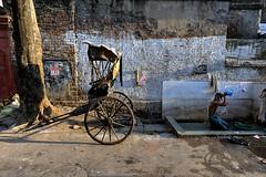 DSC_1710 (Olaf Schuelke) Tags: everydayasia streetphotography streetphoto india kolkata calcutta rickshaw washing shower