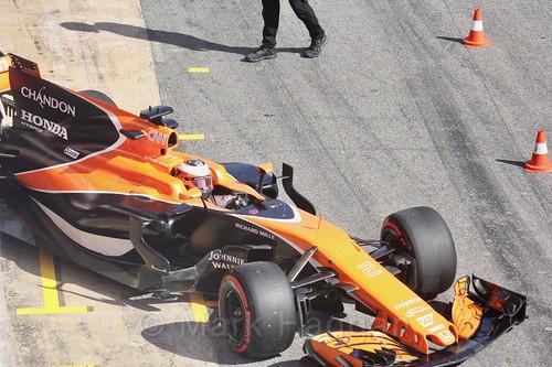Stoffel Vandoorne in Formula One Winter Testing 2017
