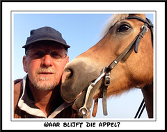 Pret met Sarah (gill4kleuren - 12 ml views) Tags: life horse me sarah fun outside happy running gill saar paard haflinger