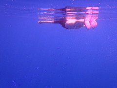 Femme en snorkeling  Biyadhoo island (Maldives) (thiery49) Tags: ocean sea woman mer fish water rose swimming swim island spring eau snorkel femme dive ile diving snorkeling bleu tuba maldives poisson printemps indien nage atoll coraux plongee ilot recif nageant corallien