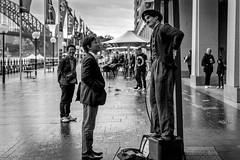 IMG_8223-1 (haynenps3) Tags: city man watching sydney quay charlie busking circular chapman