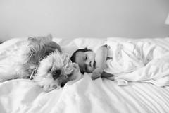 Marlee & Thomas 2 (Jamie-Owens) Tags: