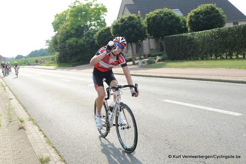 Geel Oosterlo  (282)