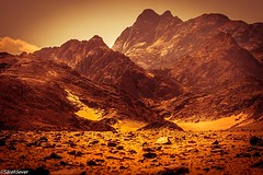 """Golden Glow Egypt's Eastern Desert Mountain Range """"Know the world in yourself. Never look for yourself in the world, for this would be to project your illusion"""" Egyptian proverb from the Luxor Temple For another view of these Egyptian beauties: http://goo (WhyCallSarah) Tags:"""