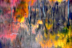 Beautiful Abstract Autumn Reflection