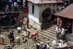 22-571 (ndpa / s. lundeen, archivist) Tags: nepal people color building men film water kids stairs 35mm buildings children temple 22 women bell footbridge nick steps wash bathe bathing 1970s washing allrightsreserved nepali dewolf pharping templegrounds dakshinkali nickdewolf photographbynickdewolf dakshinkalitemple reel22 thenickdewolffoundation imageuserequestsarewelcomeviaflickrmailornickdewolfphotoarchiveatgmaildotcom